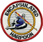 Encapsulated_Harpoon_cut_out